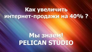 PELICAN STUDIO — Разработка и продвижение интернет-проектов
