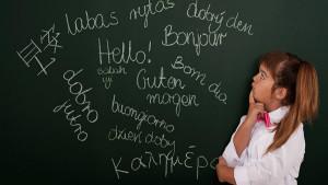 Создана программа, которая по активности мозга определяет способность к языкам