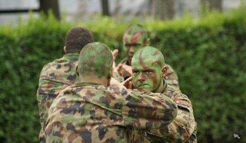 armia6