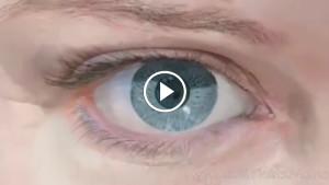 Если микроскоп направить прямо внутрь вашего глаза
