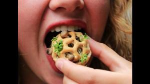 Прошлое, настоящее и будущее пищи, которую мы едим