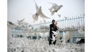 Фото повседневной жизни в Афганистане (25 фото)