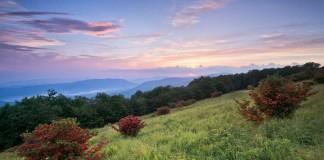 Красота природы на снимках Лори Кинкейд