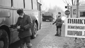 То, что нашли ученые в чернобыльских лесах, шокировало весь мир!